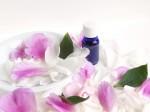 アロマ紫花